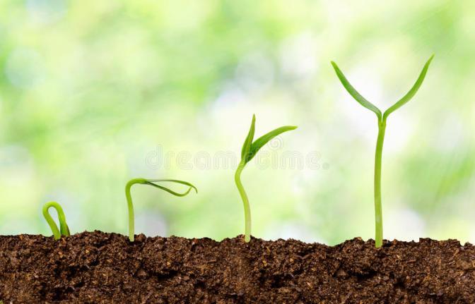 Le sept éléments essentiels pour grandir dans ta vie spirituel, plaire à Dieu et être utile à son royaume